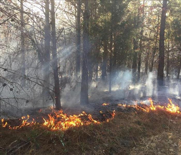 Wildfires Ravage Catawba West