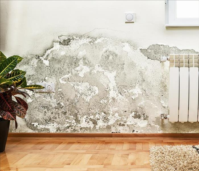 Water Damage If You Suffer Water Damage, Call SERVPRO