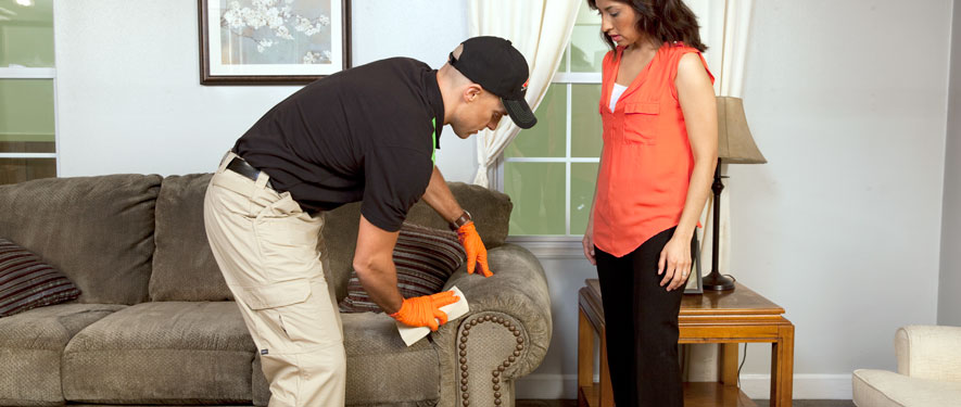 Hickory, NC carpet upholstery cleaning